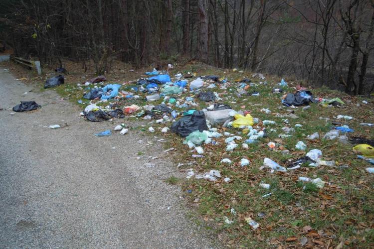 Ecologizare în zona lacului Tarniţa. Cine e de vină? Turiștii sau autoritățile - FOTO