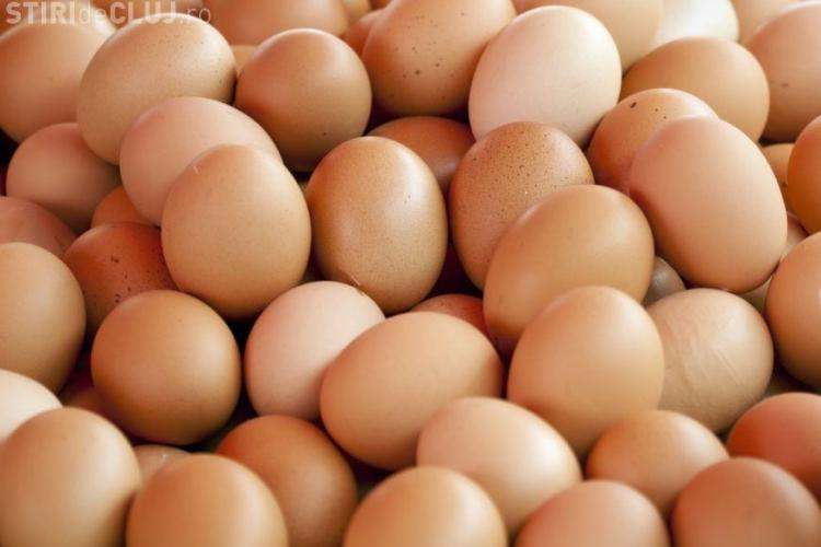 Adevărul despre scumpirea ouălor