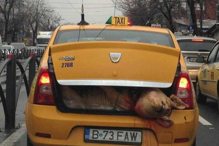 Poza zilei: Asta e România - FOTO