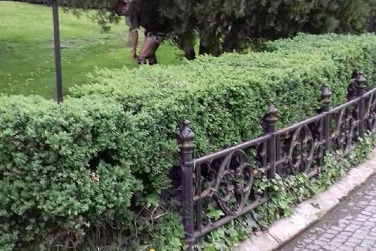 """Cluj: Cât sa fii de nesimțit ca să faci """"treaba mare"""" în Piața Unirii - FOTO"""