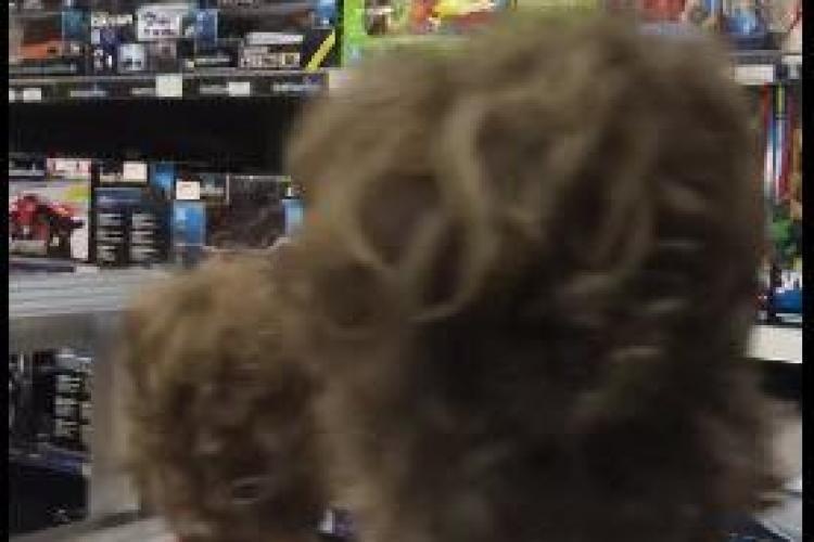 """""""Liviu Dragnea a scumpit Lego!"""". Cum plânge un copil pentru că s-au scumpit jucăriile - VIDEO"""