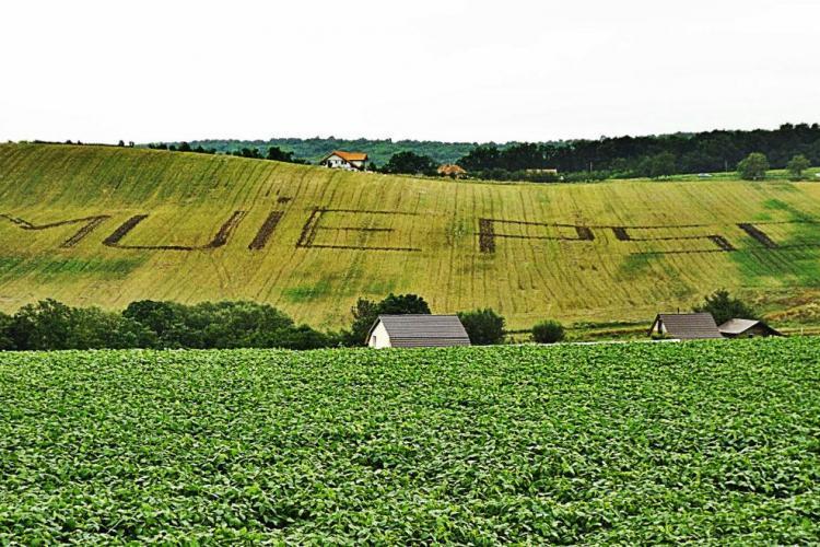 Clujeanul din Sâmboleni, care a scris pe câmp M... PSD, a recidivat: Vă vedem! - FOTO