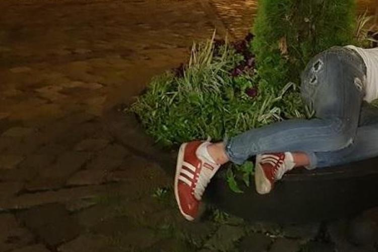 """Cluj: Un tânăr """"obosit"""" a adormit într-un rondou de flori, în Piața Muzeului - FOTO"""