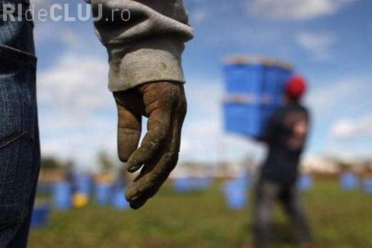"""Ministrul italian de Interne cere României să limiteze migraţia """"sclavilor"""" în Italia"""