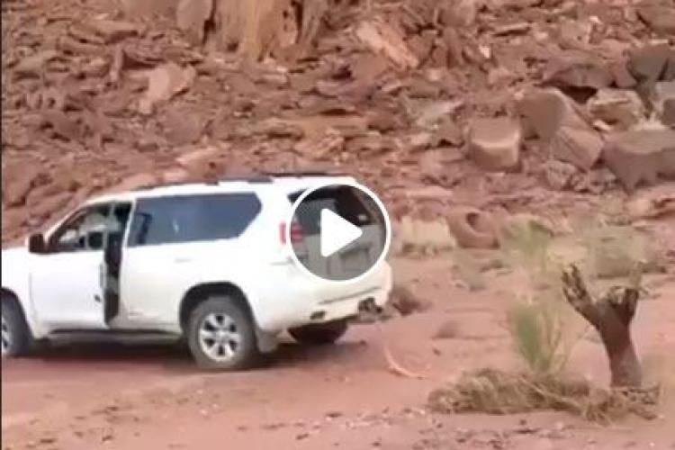E, probabil, cel mai prost șofer din lume: Oare la ce se gândea? - VIDEO