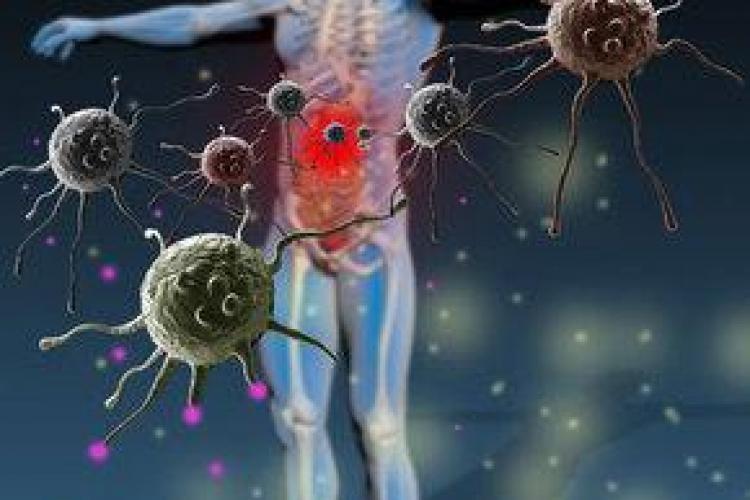 Ce alimentele îţi întăresc imunitatea
