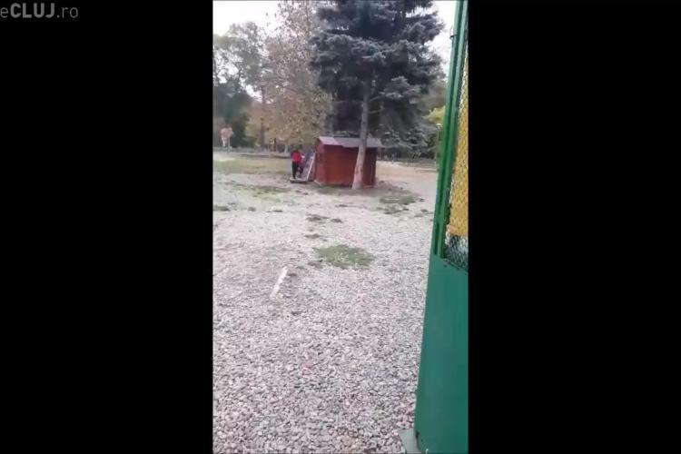 Cluj, Parcul Central: Elevi după ore spărgeau o gheretă pentru a fura produse - VIDEO