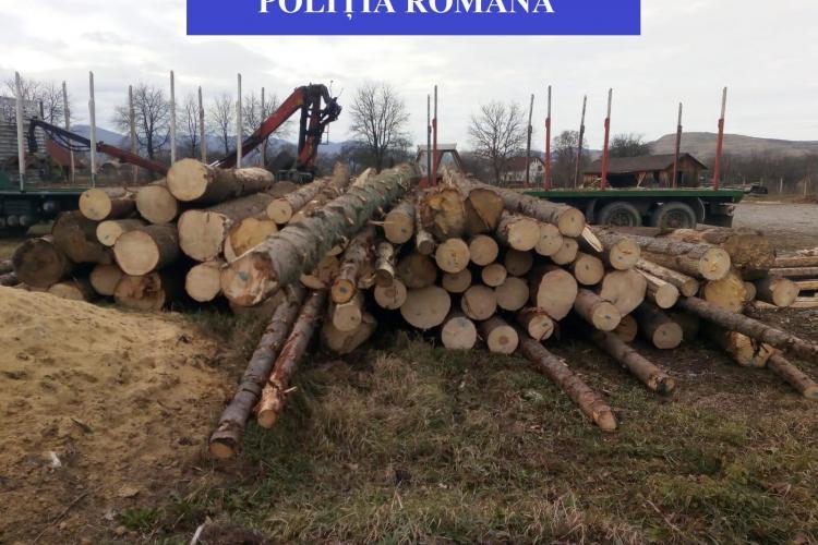 """""""Mafia"""" lemnelor la Cluj. Cum se fură camioane de copaci tăiați ilegal FOTO"""