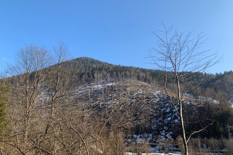 Imagini apocaliptice din zona Tranișu-Valea Draganului, lângă barajul de acumulare Floroiu - FOTO