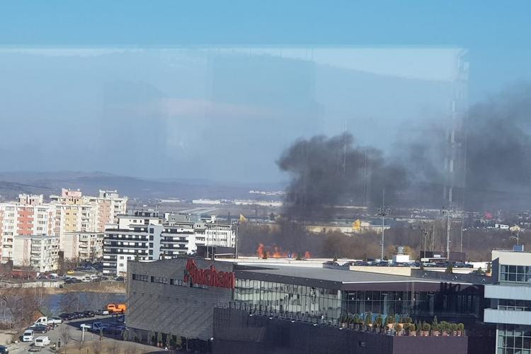 Incendiu lângă Iulius Mall Cluj! Arde stuful - FOTO