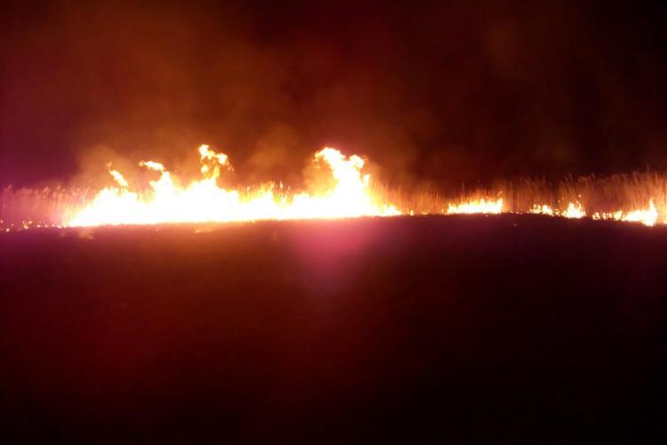 """Un """"binevoitor"""" a dat foc stufărișului de la Sic - FOTO"""