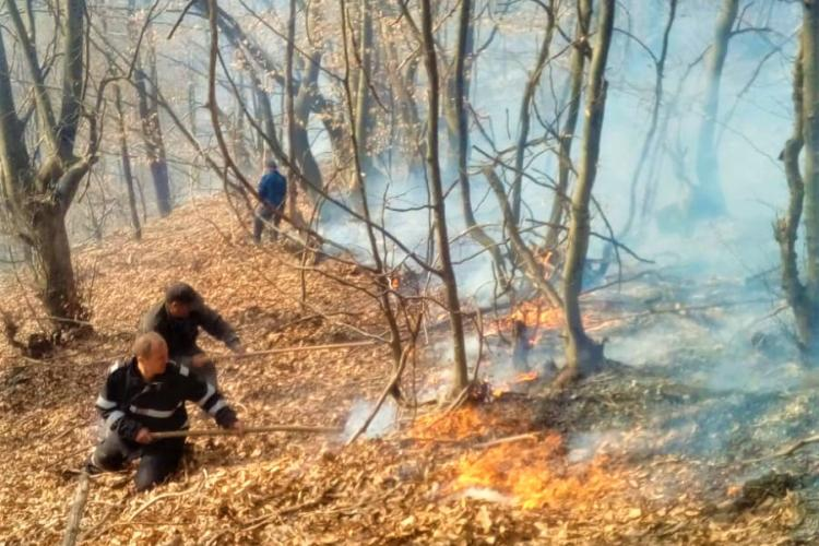 Peste 70 de incendii de vegetație la Cluj. Un bărbat a ajuns inconștient, cu arsuri, la spital FOTO/VIDEO