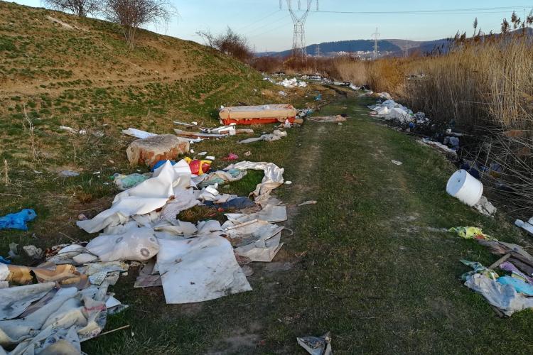 ÎnFlorești pe Malul Someșului, acțiune de igienizare a malurilor - FOTO