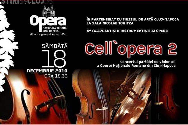 Concert de vioara la Muzeul de Arta din Cluj, sambata, de la ora 18.30