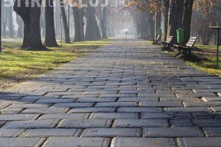 """Doua firme se lupta pentru modernzarea Parcului central """"Simion Barnutiu""""! Vezi cati bani cer pentru lucrare"""
