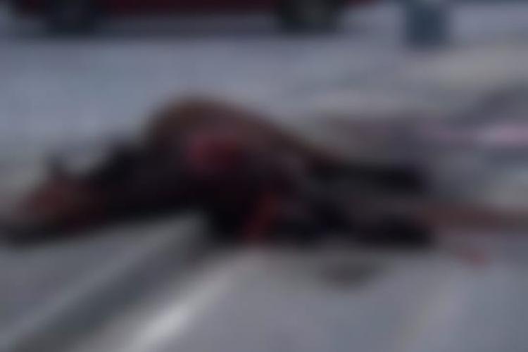 Cal lovit de mașină în Florești. Inevitabilul s-a produs - FOTO