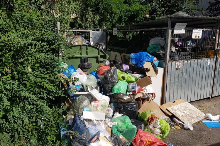 Cum arată pubelele Brantner din Gheorgheni! Clujenii sunt amendați de azi, dacă nu colectează selectiv - FOTO