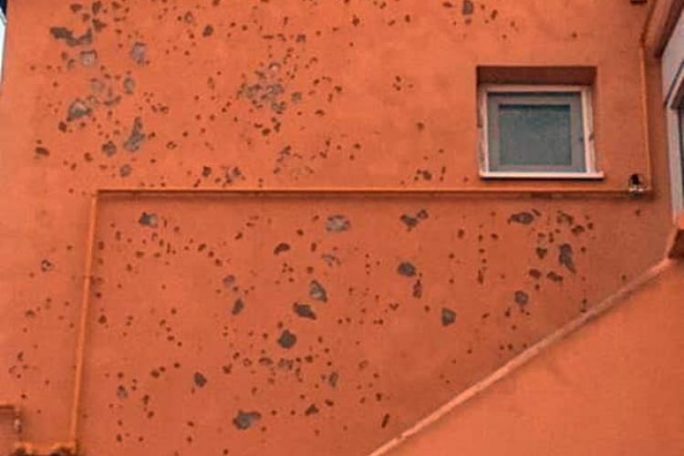 Grindina și furtunile au făcut ravagii în mai multe localități din Cluj VIDEO