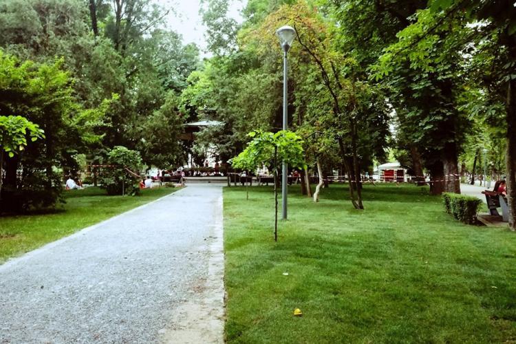 Organizatorii Jazz in the Park au replantat 1.000 de metri pătrați de iarbă în Parcul Central FOTO
