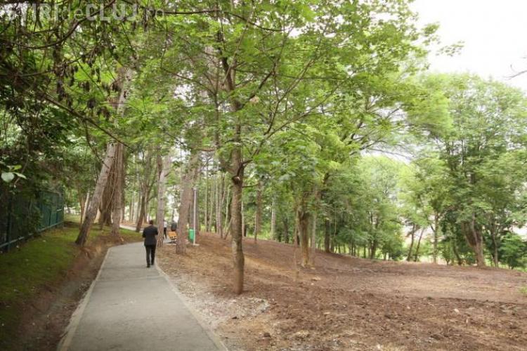 Pervers semnalat pe aleea dintre Parcul Prodan și Cimitirul Zorilor - Mănăștur