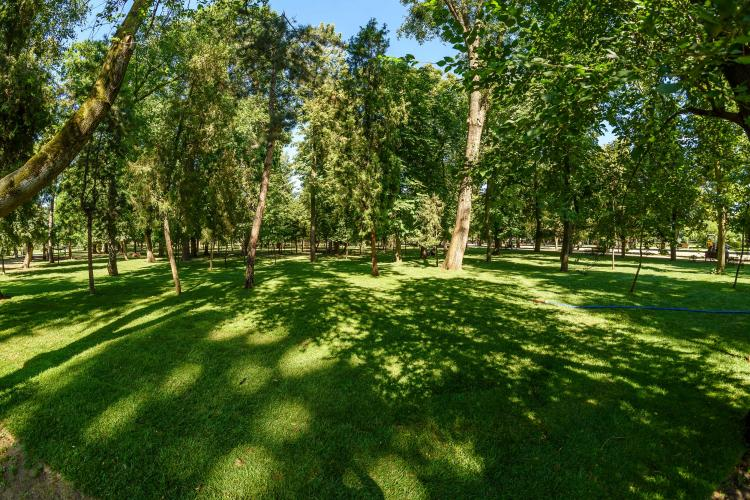 Untold a refăcut Parcul Central. Cât s-a investit și cum arată parcul - FOTO
