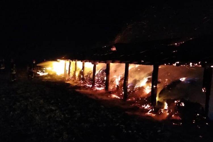 Incendiu la un saivan pentru animale din Călățele. Au murit 11 bovine - VIDEO