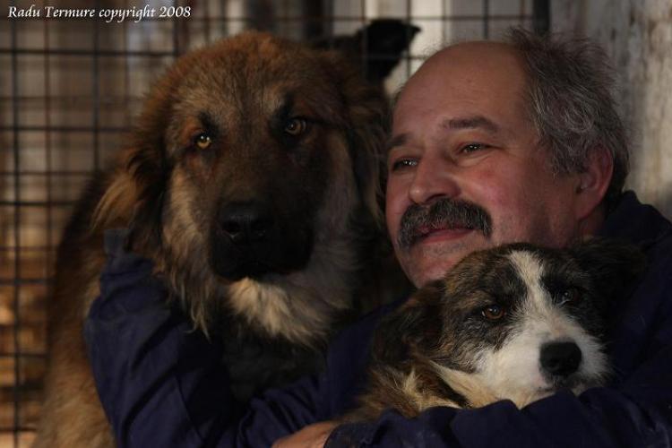 850 de câini evacuați la Cluj-Napoca alături de Radu Țermure