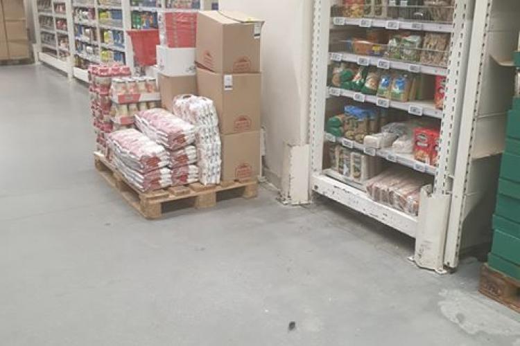 Șoarece între rafturi la Auchan Cluj - FOTO