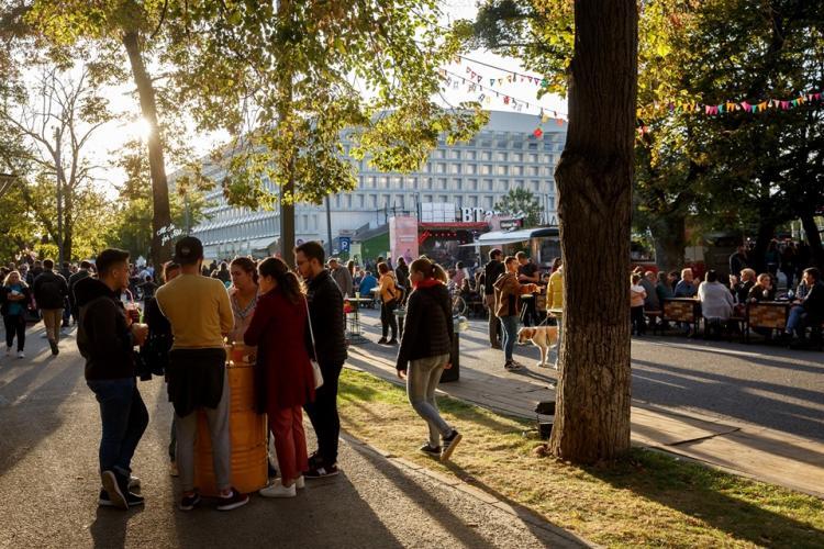 Boc se laudă cu Festivalul de mâncare de lângă stadion. Clujenii îi cer să pună mâna la lucru și să lase postările