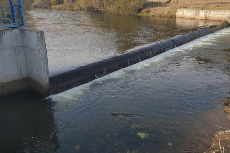 ABAST derulează o campanie de salubrizare a râului Someș la Florești - FOTO