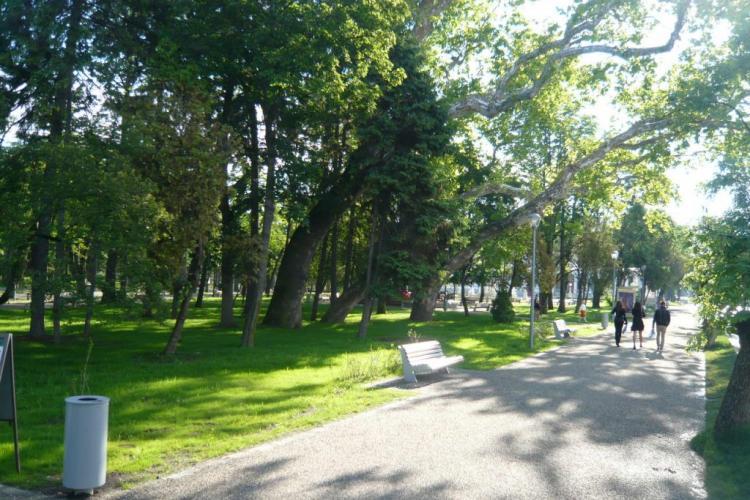 În Parcul Central din Cluj-Napoca se pune sistem de irigații prin Wi-fi. Costă cât un sfert de creșă nouă