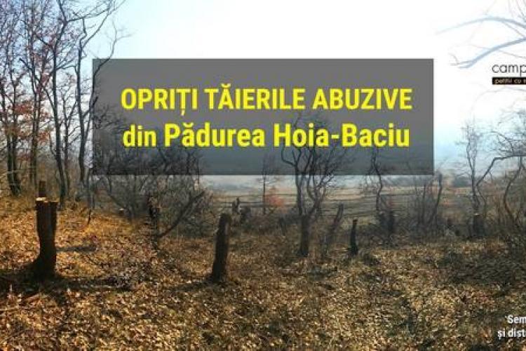 Petiție pentru oprirea tăierilor abuzive de copaci din Pădurea Hoia-Baciu