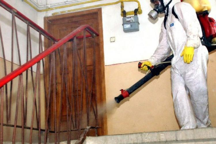 La Timișoara, unde au murit trei persoane după o deratizare, s-a constatat prezența unei substanțe neurotoxice