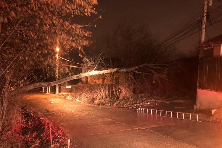 Copac căzut peste firele de electricitate la Cluj-Napoca. Intervin pompierii pe strada D.D. Roșca