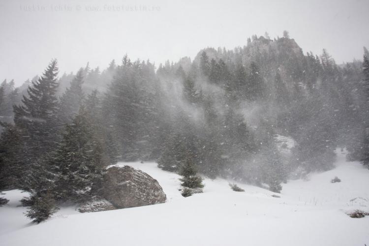 COD PORTOCALIU de ninsori și vijelii în județul Cluj
