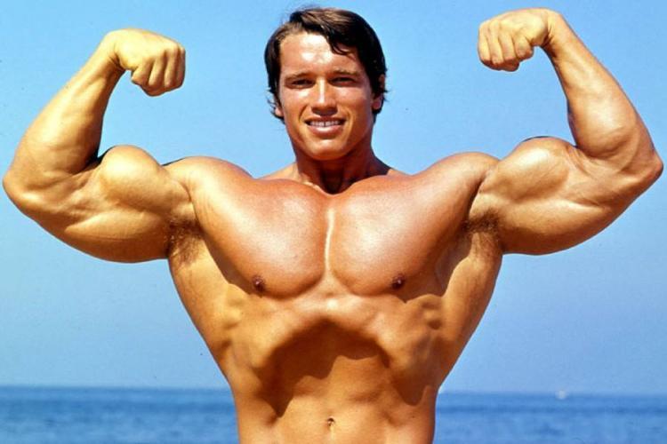 Arnold Schwarzenegger și-a crescut mușchii cu steroizi produși la Cluj