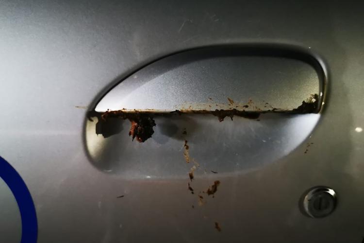 O clujeancă mânjește cu rahat clanțele mașinilor din Gheorgheni - FOTO