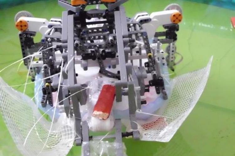 UBBots 2011: Vezi cum arata robotul care culege pet -uri de pe lac - VIDEO