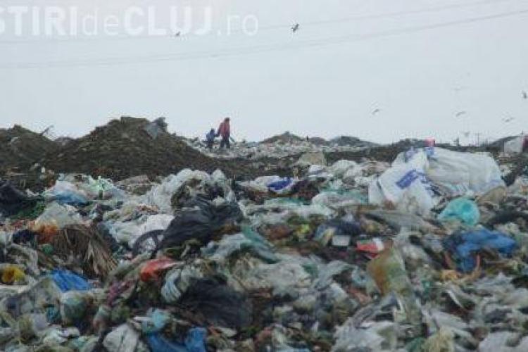 Barbat decapitat si cu membrele transate - gasit in groapa de gunoi a spitalului din Lugoj