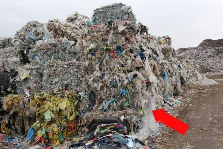 La Pata Rât se ard deșeuri din Italia! Cum fac băieții deștepți bani și Primăria Cluj se face că nu vede