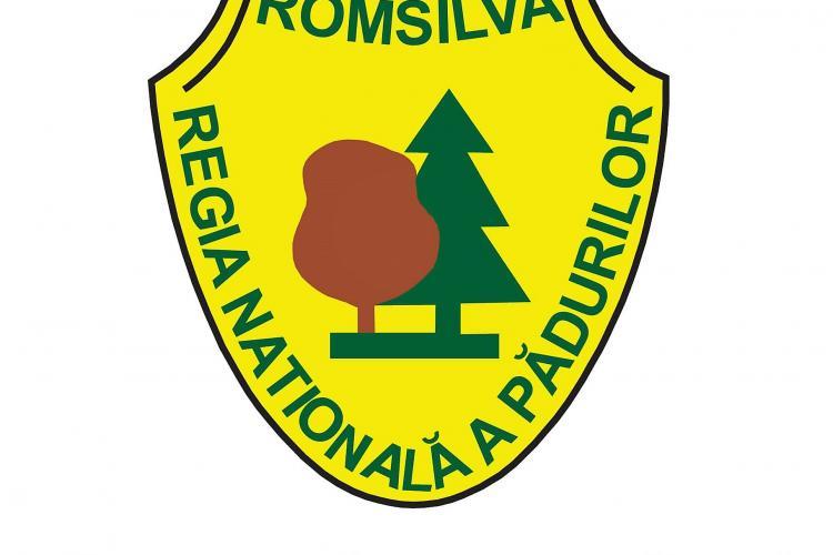 Mii de controale efectuate de Romsilva pe perioada stării de urgență. S-au confiscat peste 800 metri cubi de lemne