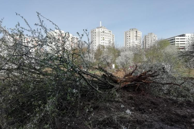Boc: La terenuri, în Mănăștur, nu este încă aprobat niciun bloc