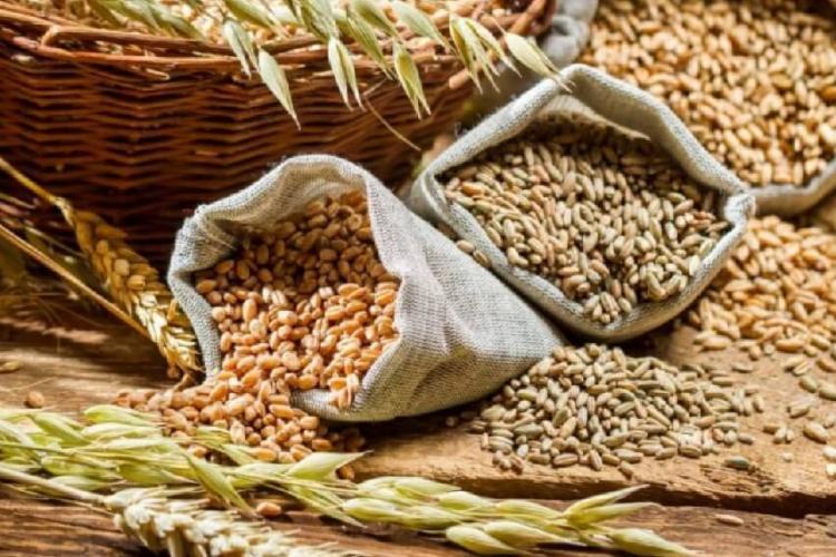 România a adoptat o nouă ordonanță militară ce permite exportul de cereale