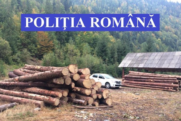 CLUJ: Controale pentru prevenirea tăierilor ilegale de arbori. Zeci de metri cubi de lemne au fost conficați FOTO