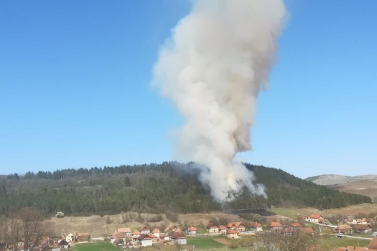 CLUJ: Trei hectare de pădure arse în urma unui incendiu! Totul a pornit de la o gospodărie FOTO