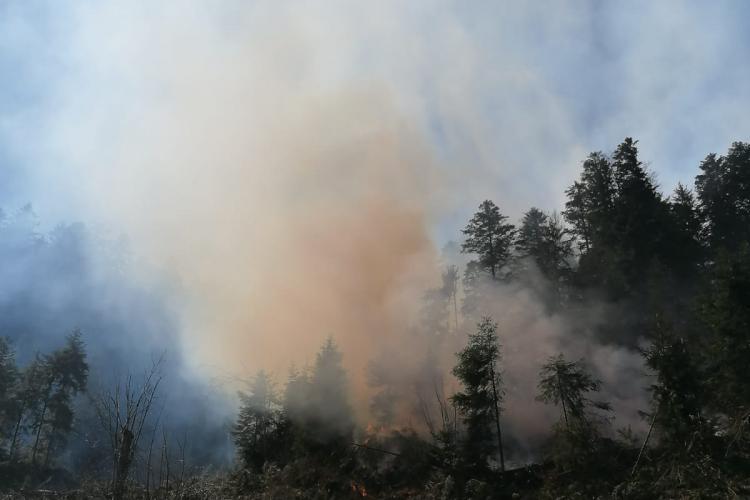 CLUJ: Intervenție de peste cinci ore a pompierilor, la un incendiu de pădure! A trebuit să escaladeze o pantă extrem de abruptă FOTO/VIDEO