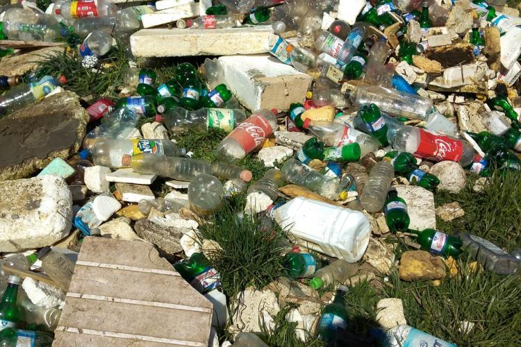 Grămezi de gunoaie colectate de pe Someșul Mic, în cartierul Grigorescu FOTO