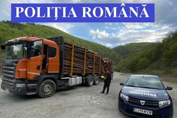 Firmă din Cluj prinsă cum a expediat peste 1.100 de metri cubi de lemne fără acte de proveniență corespunzătoare FOTO