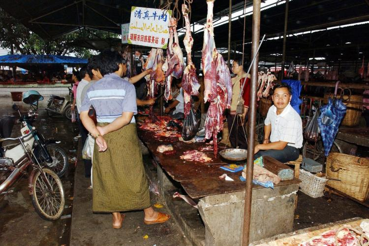 China a interzis consumul de animale sălbatice în zona ZERO a pandemiei