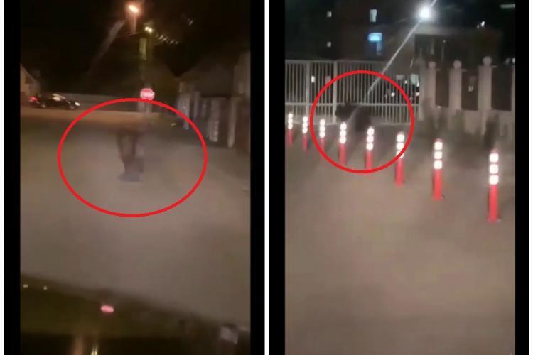 Urs filmat alergând pe străzile din Câmpia Turzii. L-au terorizat cu farurile de la mașină - VIDEO
